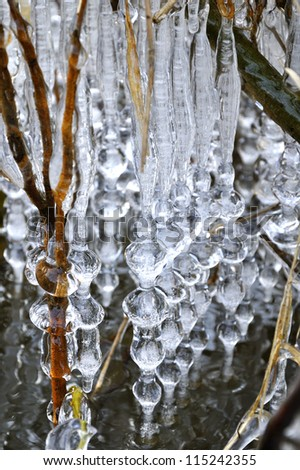 Icicles along branches above river Luznice - stock photo