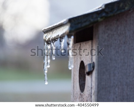 Icicles hang on the roof of a bluebird house after an overnight freeze in early spring
