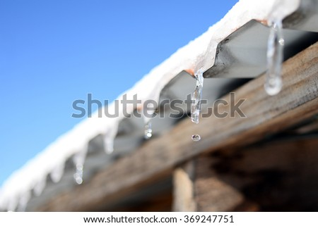 icicles sparkling white with water drops ice hanging down on the blue background - stock photo