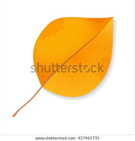 Icon autumn leaf. Isolated autumn leaf on a white background. Bright colorful autumn leaf. Fall back to school. Nature autumn.  Raster illustration. - stock photo