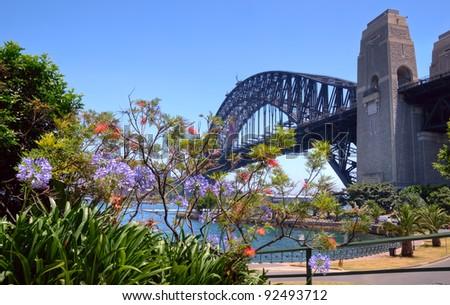 Iconic Sydney Harbor Bridge juxtaposed with native flora. - stock photo