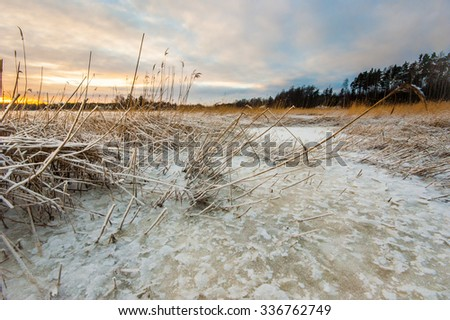 Icy beach in cold winter - stock photo