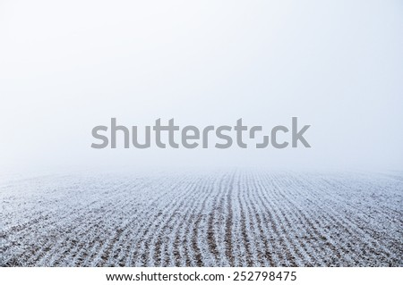 Icy blueish acre at a misty winter-day - stock photo