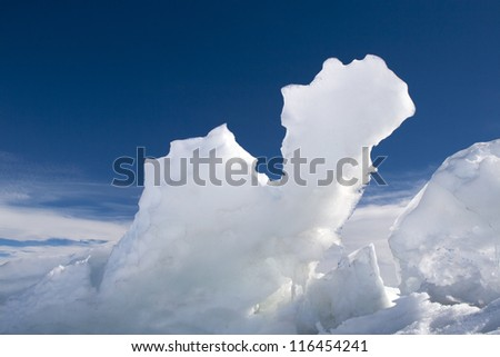 Icy camel - stock photo