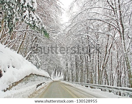 icy mountain road with the trees full of freshly fallen snow on a cold winter day - stock photo