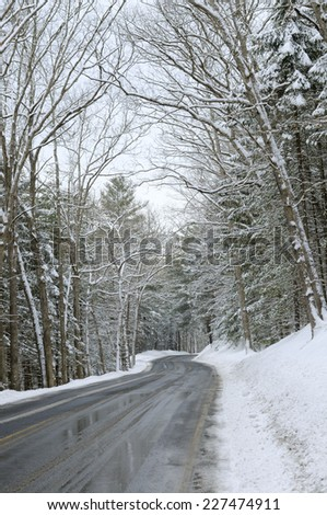 Icy Road Through Snow Covered Woods - stock photo