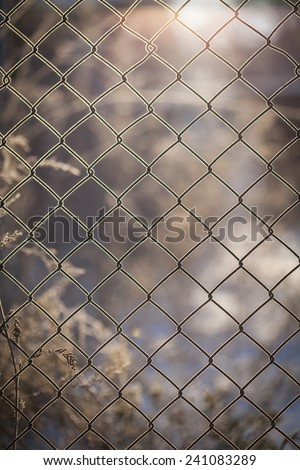 Icy wire mesh fence in winter. Wire background - stock photo