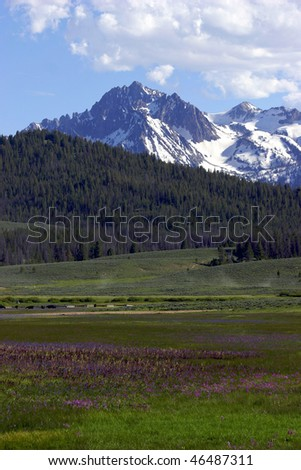 Idaho Valley