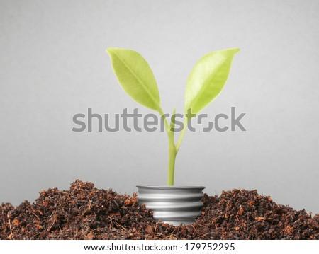 ideas, energy saving light bulb  - stock photo