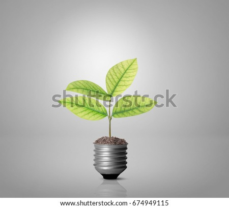 save electricity stock images royalty images vectors ideas energy saving light bulb