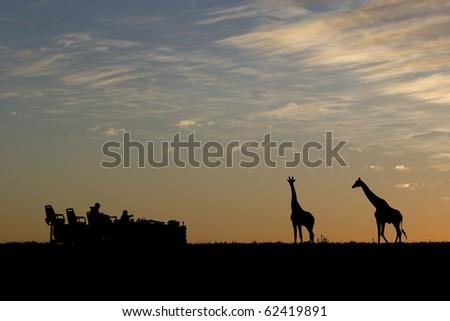 Idyllic african safari silhouette. - stock photo