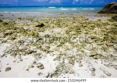 Idyllic beach of Andaman Sea in Tachai island - Thailand - stock photo