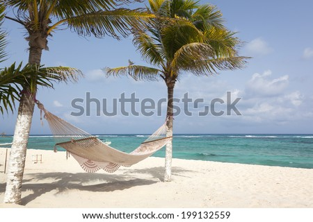 Idyllic beach with coconut trees and hammock at Mexico - stock photo
