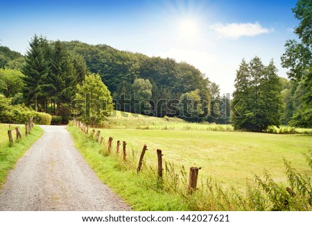 Idyllic country road in the sun, with copy space and forest. Single lane road through fields and pastures, nature background.  - stock photo