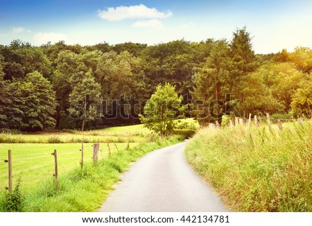Idyllic country road with copy space and forest. Single lane road through fields and pastures, nature background. - stock photo
