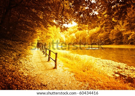 Idyllic forest path by the lake in autumn