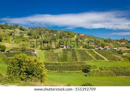 Idyllic green hill vineyards and cottages area, Kalnik mountain, Croatia - stock photo