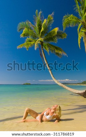 Idyllic Holiday In a Coconut Grove  - stock photo