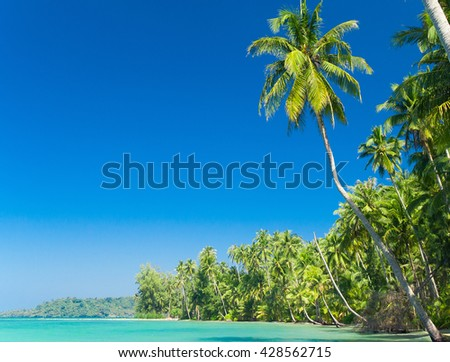 Idyllic Island Relaxation In Peace  - stock photo