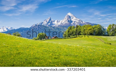 Idyllic landscape in the Alps with fresh green meadows and blooming flowers and snowcapped mountain tops in the background, Nationalpark Berchtesgadener Land, Bavaria, Germany - stock photo