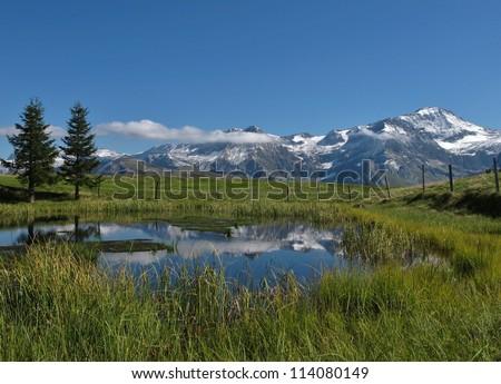Idyllic Landscape In The Bernese Oberland - stock photo