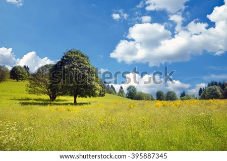 Idyllic late spring, early summer landscape (in France) - stock photo