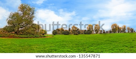 idyllic meadow with trees on a sunny foggy day - stock photo