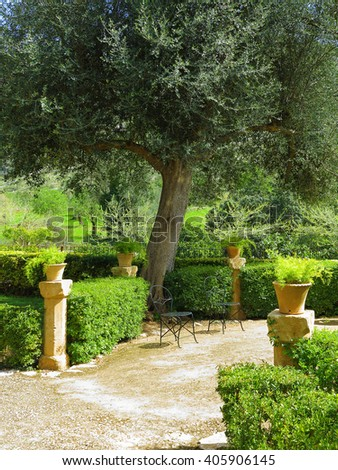 idyllic mediterranean garden with terrace, chairs and olive tree - stock photo