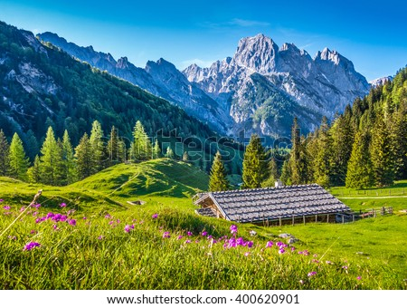 Idyllic mountain scenery in the Alps in springtime with traditional mountain chalet and fresh green mountain pastures with blooming flowers in beautiful evening light with blue sky at sunset - stock photo