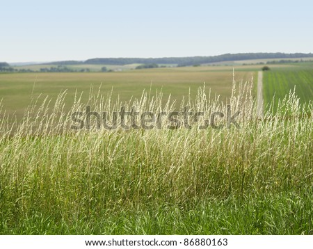 idyllic rural background in Southern Germany at summer time