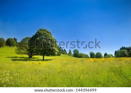Idyllic rural scenery with green meadow and deep blue sky, landscape in France - stock photo