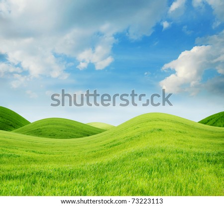 Idyllic spring landscape with fresh green grass