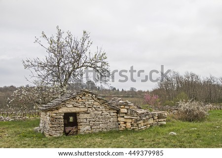 Idyllic stone house in Istria with blooming cherry tree - stock photo