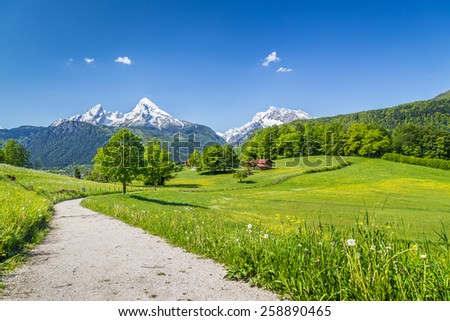 Idyllic summer landscape in the Alps, Nationalpark Berchtesgadener Land, Bavaria, Germany - stock photo