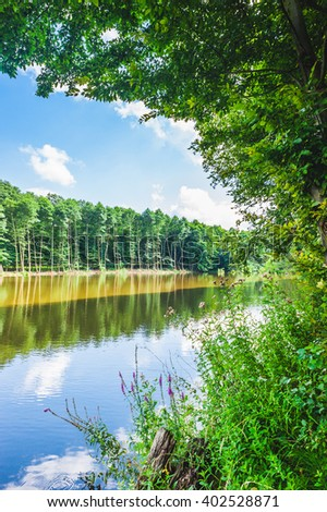 Idyllic tranquil fishing lake landscape with trees of the forest reflected in the water and framed with green trees leaning in to the water - stock photo