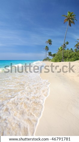 Idyllic tropical beach with white sands, turquoise blue waters and palm trees.