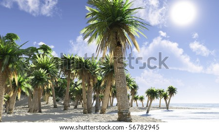 Idyllic tropical island with palm trees
