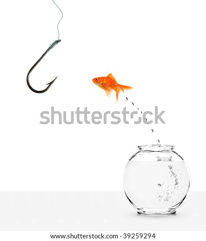ignorant goldfish jumping out of bowl towards empty hook