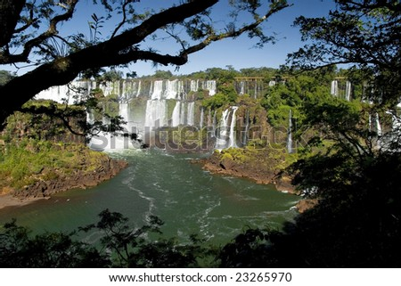 Iguazu falls in the jungle