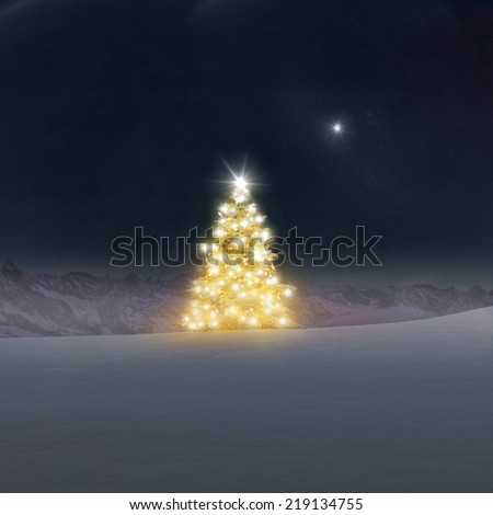 Illuminated Christmas Tree - stock photo