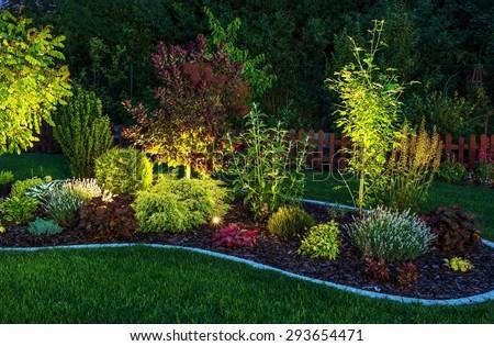 Illuminated Garden by LED Lighting. Backyard Garden at Night Closeup Photo. - stock photo