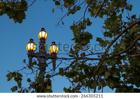 Illumination lamp seen through some tree branches - stock photo