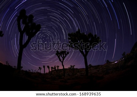 Illuminous Light Painted Landscape of Stars