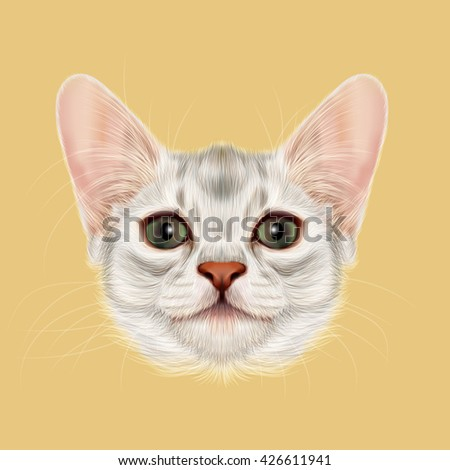 Illustrated portrait of Somali kitten. Cute fluffy face of domestic cat on yellow background. - stock photo