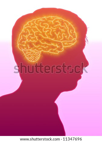 Illustrated side view of a man showing the brain - stock photo