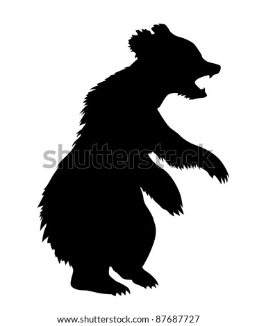 illustration bear on white background - stock photo