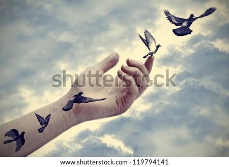 Illustration, bird tattoos come to life - stock photo