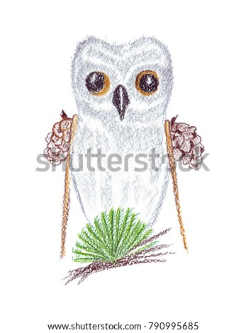 Illustration Drawing Of Colored Watercolor Pencils Portrait An Owl On Isolated