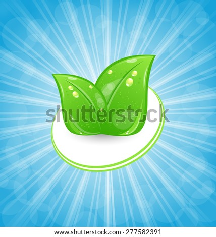 Illustration eco friendly card with green leaves and blue rays - raster - stock photo