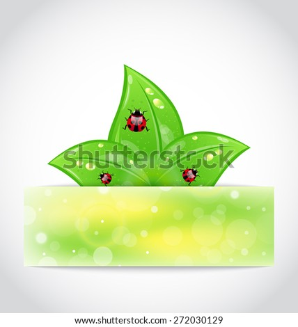 Illustration eco leaves with ladybugs sticking out of the cut paper - raster